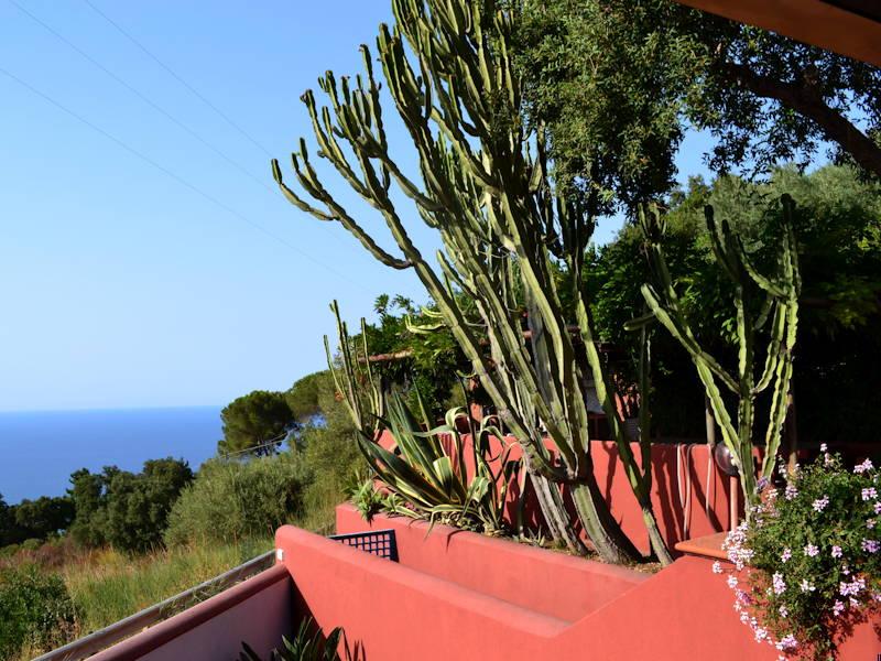 Mediterranean-Garden2